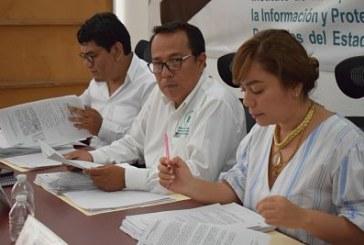 Aprueba el órgano garante su Programa Anual de Verificación para el año 2019.